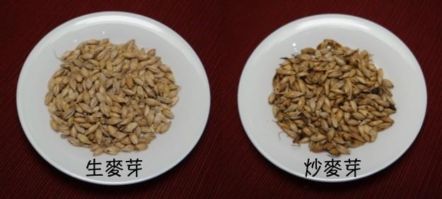 圖1:生麥芽、炒麥芽