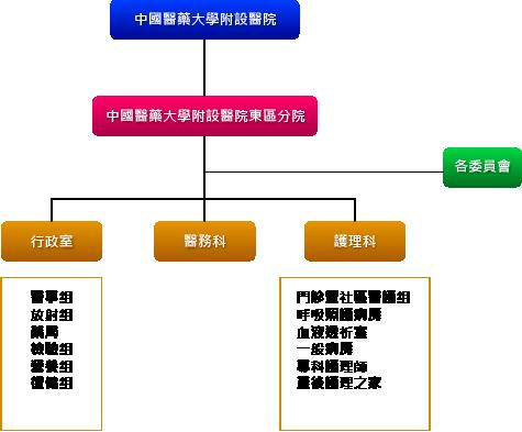 中國醫藥大學附設醫院東區分院組織架構