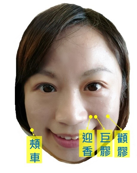 圖1:臉部緊緻拉提穴組(張尹人醫師提供)