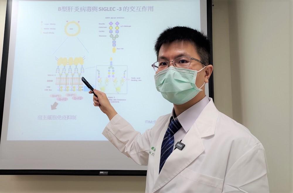 根治慢性B肝現曙光!B肝病毒的免疫檢查點 開啟治療新契機