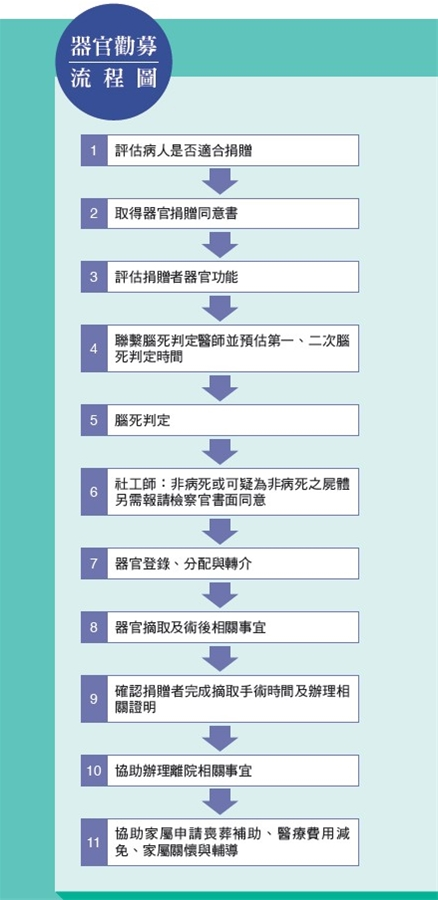 器官勸募流程圖