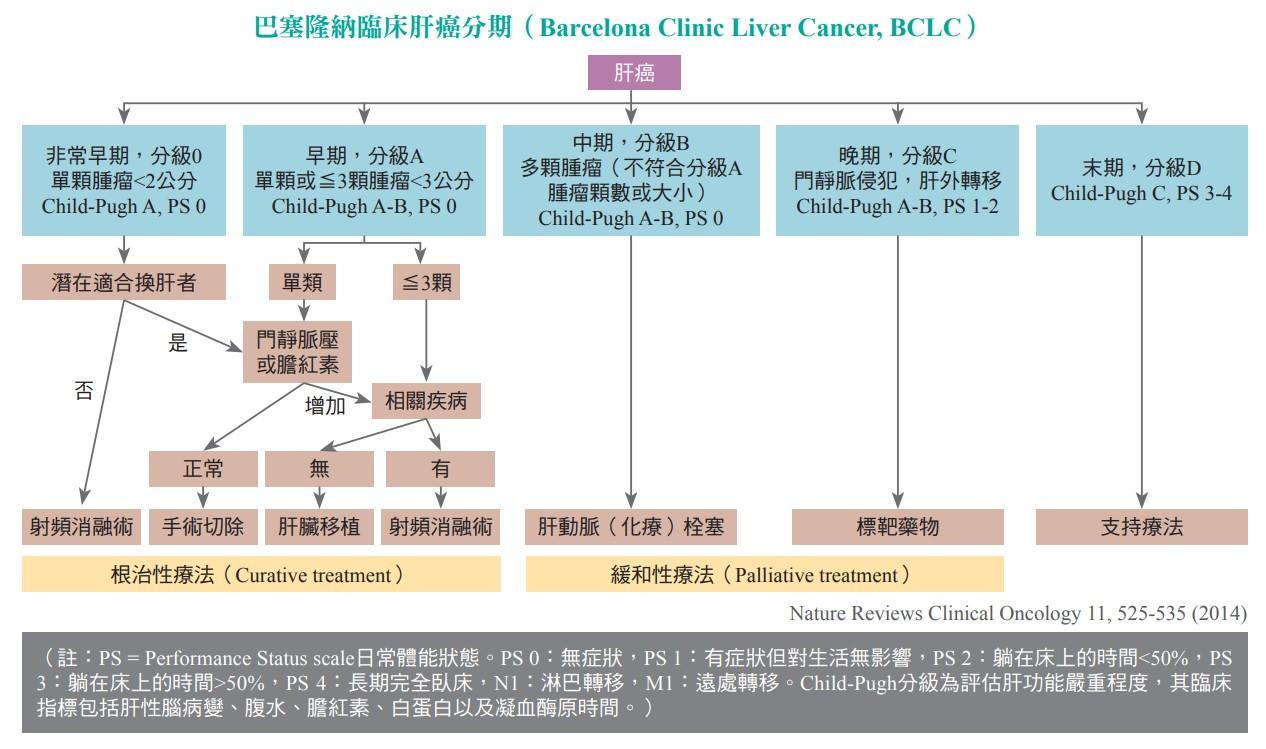 巴塞隆納臨床肝癌分期