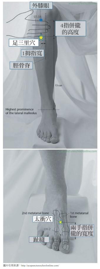 四肢穴位-足部