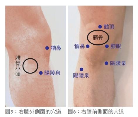 膝蓋保健止痛的穴道