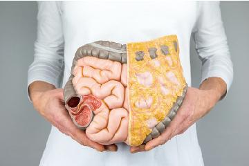 大腸直腸癌治療照護團隊