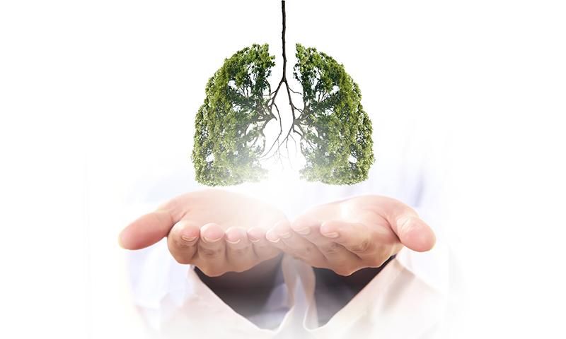 進入個人化精準醫療時代 肺癌的全方位治療策略
