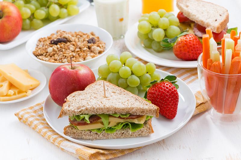 微量營養素與免疫功能