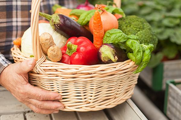 改善腸道健康 必須多管齊下